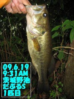 09.6.19単独茨城野池釣行とY川0001.JPG